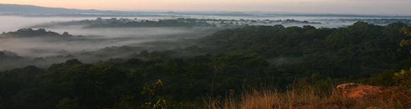 Kakamega regenwoud Buyanga viewpoint in Kenia
