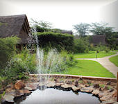 Ziwa Bush Lodge  accommodatie