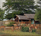 Satao Camp, exclusief tentenkamp in Tsavo East Kenia